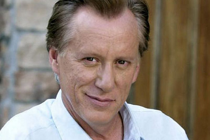 James Woods Comedic Flair Sums Up Tuesday's Debate In The Best Way