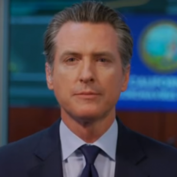 Gov Newsom Passes Law To Let Foxes In The Henhouse