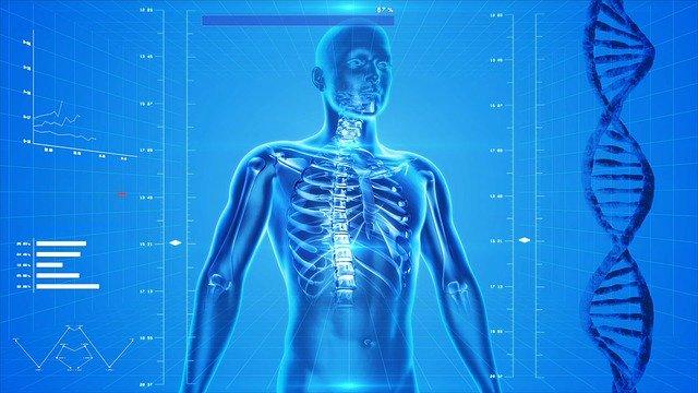 Liberal Doctors Seek To Rename Human Anatomy To Make Them More PC, No Joke